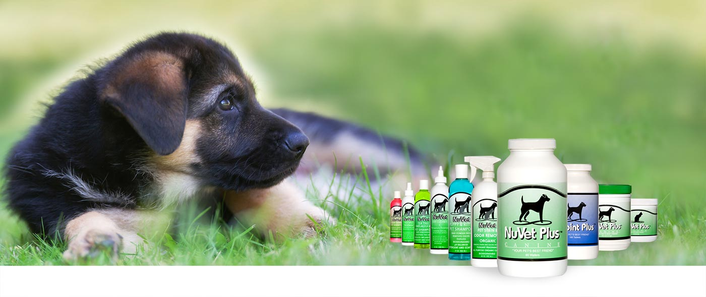 nuvet-pet-dogs-cats-supplemets all products