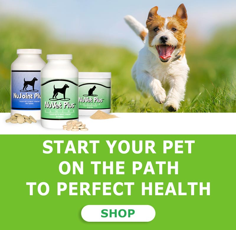 nuvet-pet-dogs-cats-supplemets-immune-support